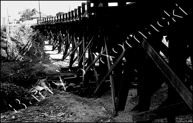 Train Trestle, black and white photograph